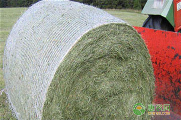 现在捆草网价格要多少钱一卷?它有什么用途?如何使用?