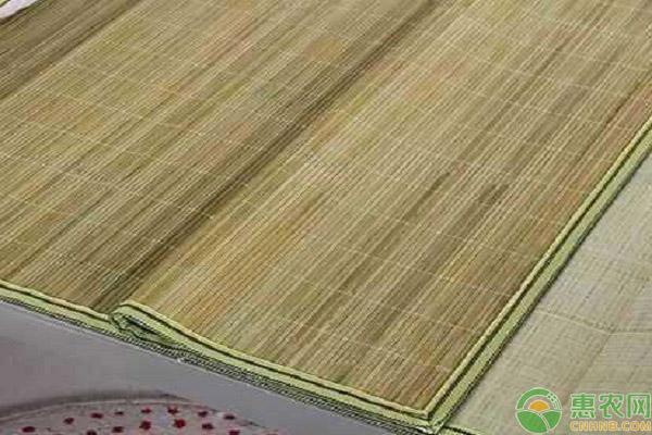 竹子的价值用途