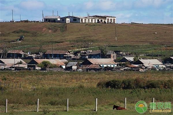 城里人不能买农村的宅基地,除非是这五种情况,农民朋友注意了!