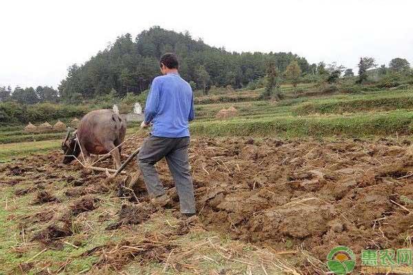 耕地地力保护补贴投诉处理
