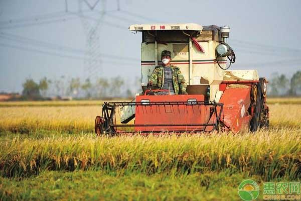 2019年农业政策新措施