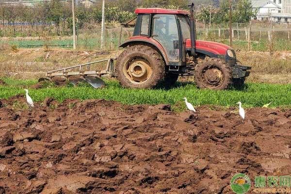 土地休耕的补贴标准