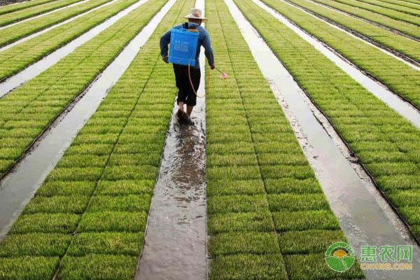 广东市商品有机肥购置补贴