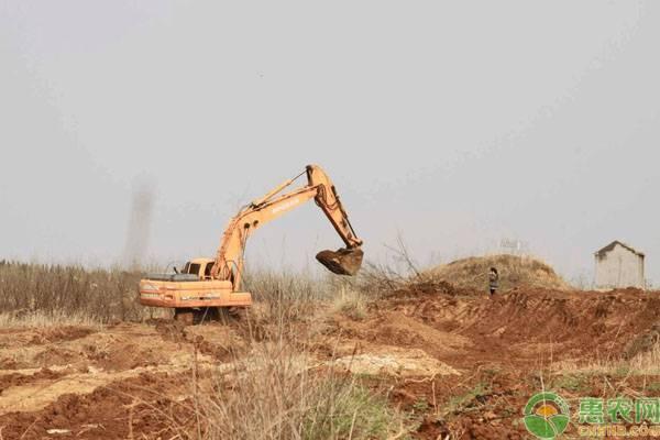 农村的违建房不是全部会被强拆,这几类就不会被拆!