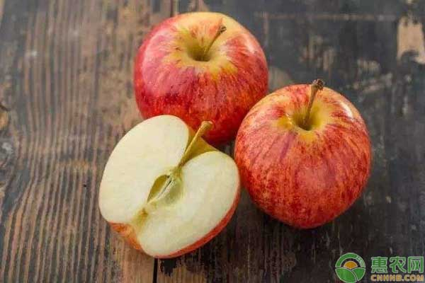 苹果的最佳食用时间