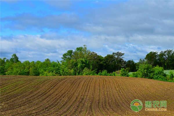 农民的土地被国家征收后,国家会如何安置农民?