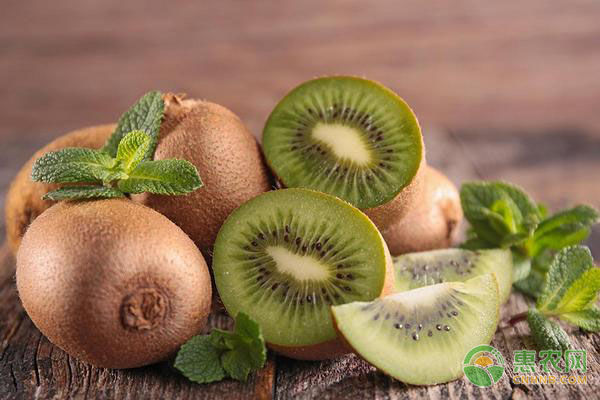 猕猴桃属于哪类水果?