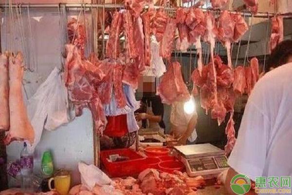 牛肉价格走势分析