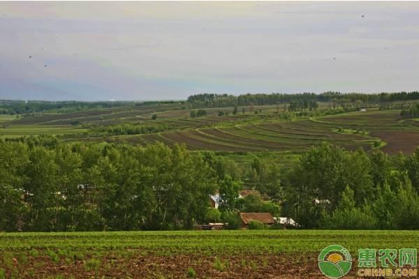农业补贴去哪个部门领取?农业补贴政策介绍