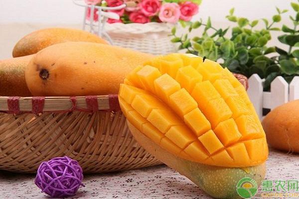 芒果的食用搭配禁忌
