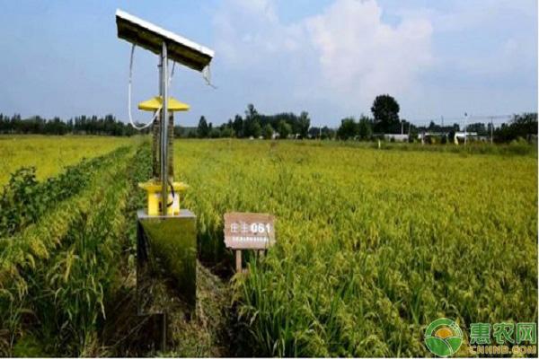 未来农业创业致富新点子