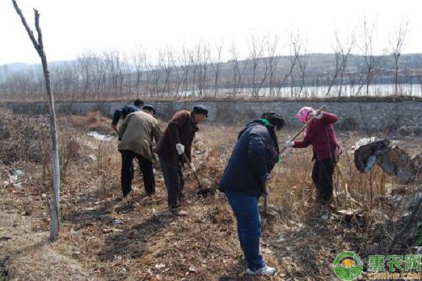 农村环境整治