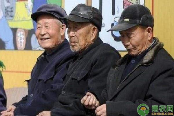 农村养老补贴具体内容