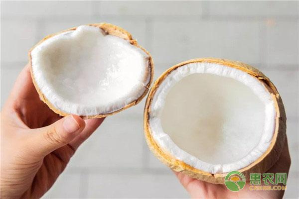 泰国香水椰价格多少钱一箱?它有什么特点?