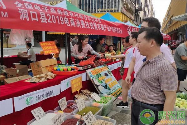 洞口县2019电商消费扶贫暨产销对接活动于23日顺利开展