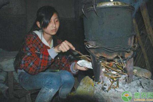 农村贫困家庭补贴