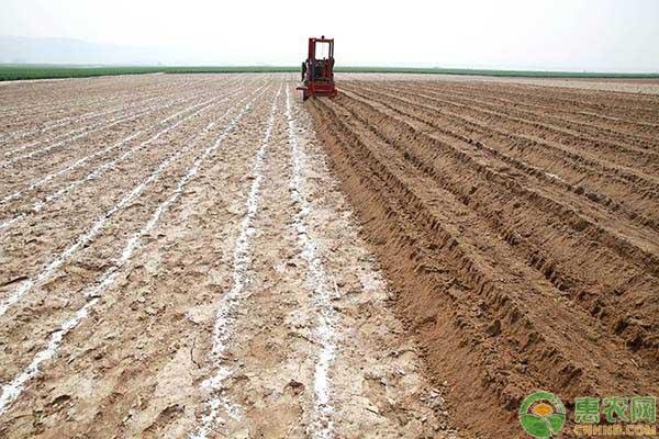 农村土地承包合同的相关规定