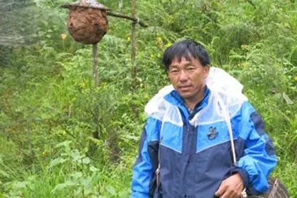 云南一农民通过养殖胡峰,年赚百万!
