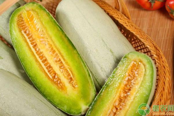 白皮甜瓜品种
