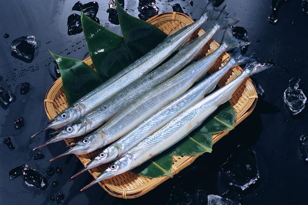 长嘴鱼叫啥名字?长嘴鱼的作用和功效有哪些?