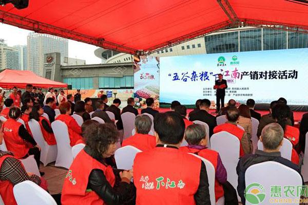 惠农网团队助推农产品