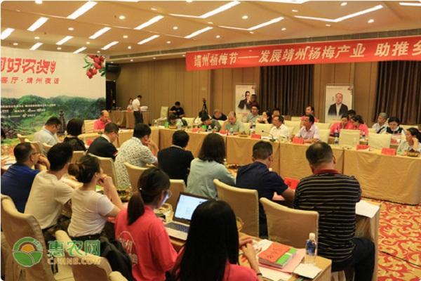 发展县域特色农业 惠农网团队助推靖州杨梅品牌软实力建设