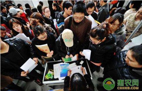 中部崛起看长沙,乡村振兴看惠农网团队!