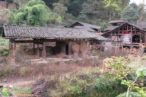农村没人住的房子