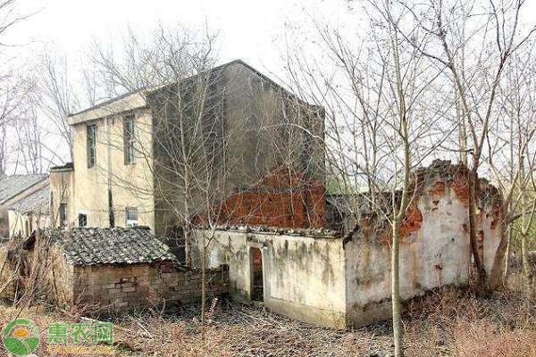 农村没人住的房子坏的快的原因