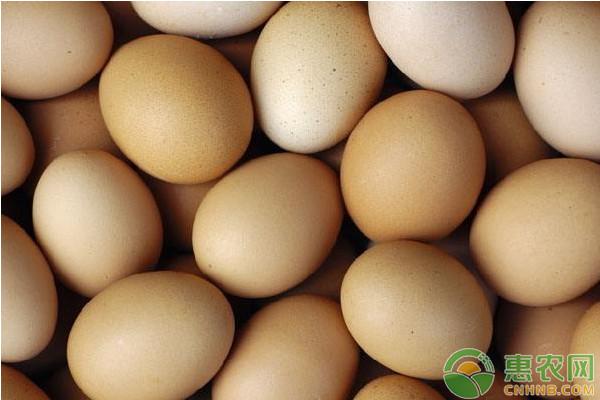 国庆期间,鸡蛋价格多少钱一斤?9月30日全国鸡蛋价格最新行情