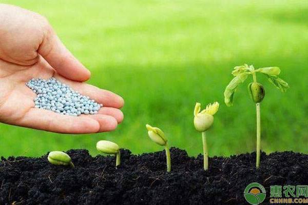 为什么粮食价格不见涨,农药化肥的价格却一直在涨?