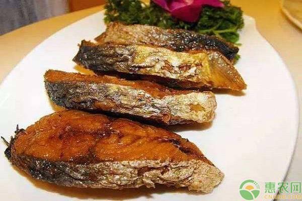鲅鱼价格多少钱一斤?可以人工养殖吗?(附市场前景分析)