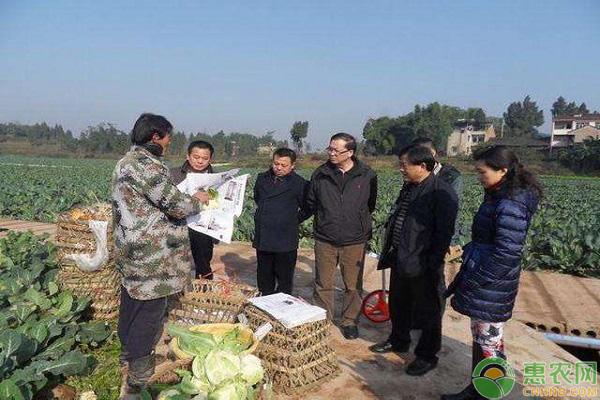 农业发展推动