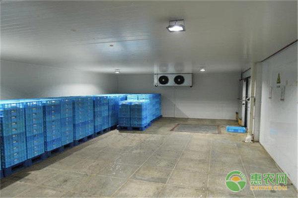 在农村建冷库也有补贴,具体政策是怎样的?如何申请补贴?