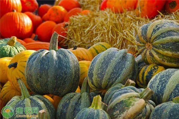 无公害农产品认证标准及难点