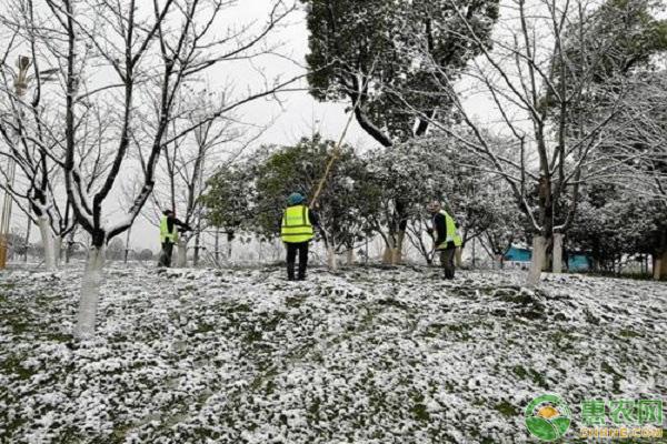 园林积雪处理