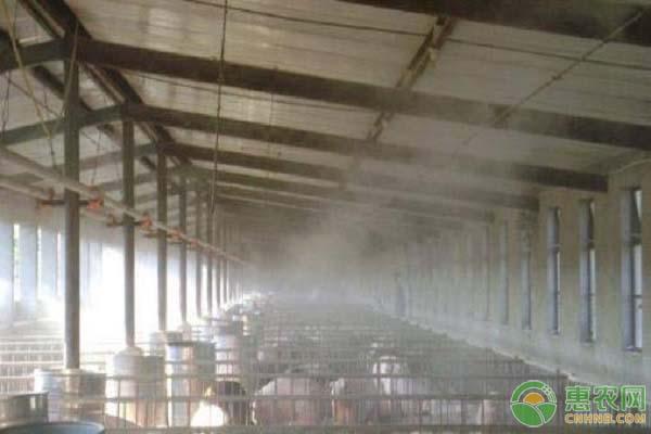 养殖场消毒