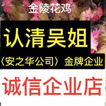 麻鸡苗  快大金陵鸡苗…23年诚信、店有〈诚信企业〉证明书,金陵