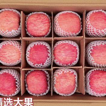 红富士苹果  陕西苹果红富士新鲜脆甜当季平果整箱包邮