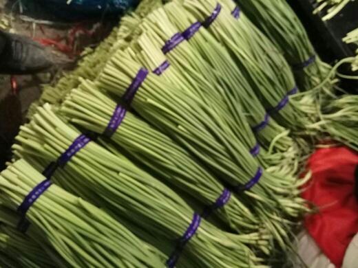 濟寧金鄉縣 金鄉優質蒜苔大量供應,產地直銷一噸起批隨到隨裝
