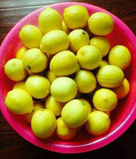 资阳安岳县 黄柠檬新鲜四川安岳尤力克黄柠檬一级中果皮薄汁多无农药无打蜡