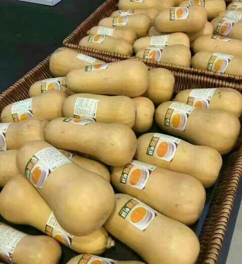 汉中城固县奶油南瓜 2~4斤