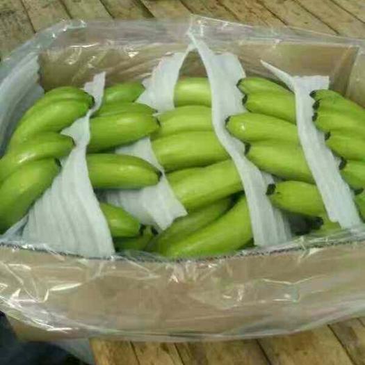 南宁金陵香蕉