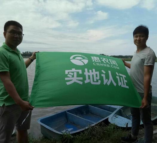 潜江潜江市 6一9大红,肉质饱满,清水小龙虾产地直供,供应各大市场和餐饮