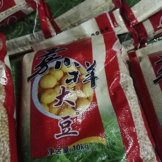 济宁嘉祥县中黄13黄豆 生大豆 1等品