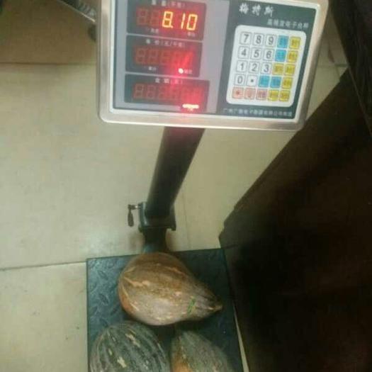 南宁富硒南瓜 10~15斤 其他