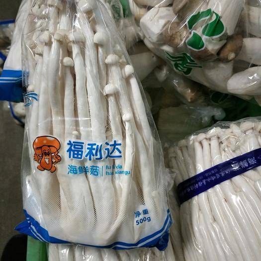 江苏省连云港市海州区海鲜菇 人工种植 鲜货