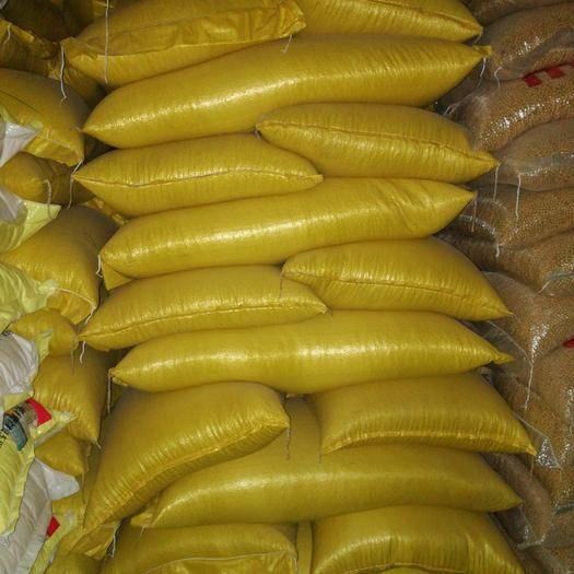 金华义乌市芽豆690 生大豆 1等品