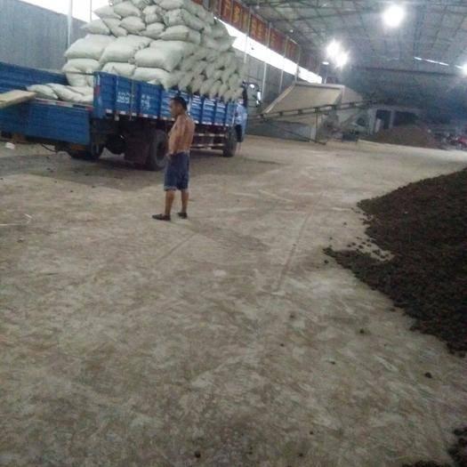 成都川芎 產地種植戶直批,包含量包藥檢,絕不含硫。不滿意包退貨。