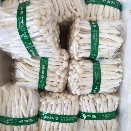福建省厦门市集美区海鲜菇 人工种植 鲜货